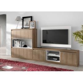 Ensemble TV + Panneau TV rotatif ADEN 2921